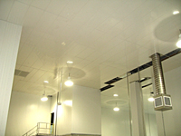 Suspended Ceiling Panels - 2